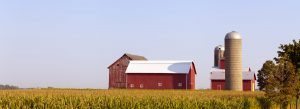 Header-Farm-in-cornfield